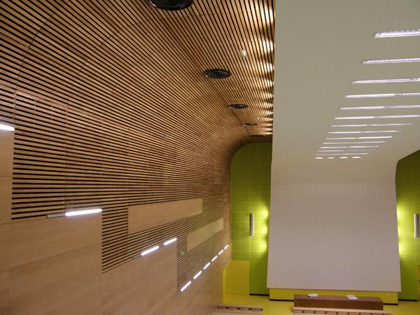 Photo Plafond métallique avec Lames 2